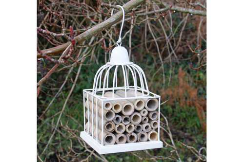 Gazebo / Bird Cage Insect House - CREAM