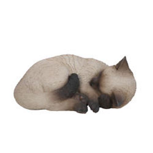 Real Life Sleeping Cat in Cream