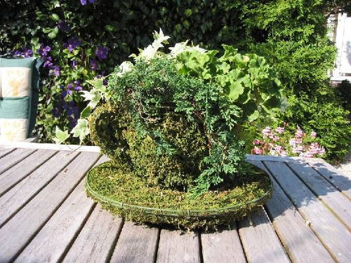 Teacup & Saucer - Large Topiary Frame