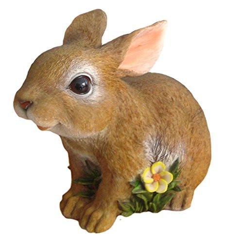 Smiling Playful Rabbit
