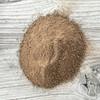 Soil Sample (Silt loam)