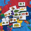 herbs and spices cards