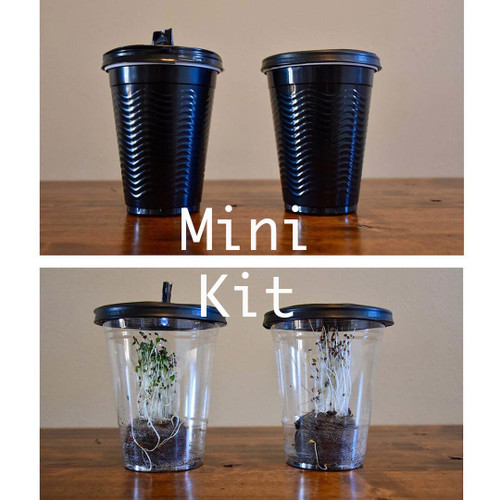 Desktop Greenhouses - Mini Kit
