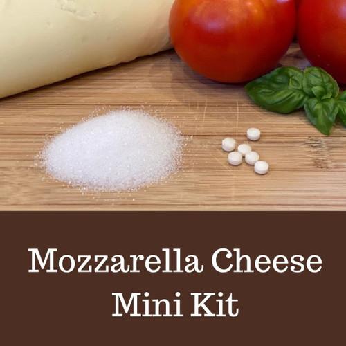 Mozzarella Cheese - Mini