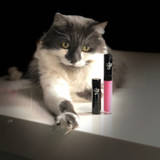 Encore Pink Lipstick. Dawes Custom Cosmetics
