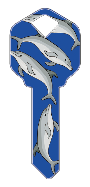 HK13- Dolphins