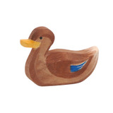 Ostheimer swimming duck