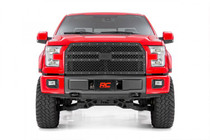 Ford Mesh Grille (15-17 F-150) mounted view