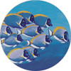 Coastal Fish Fine Designer Rugs Shapes