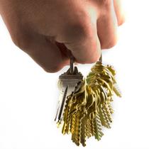 Premium bump key set - huge key ring