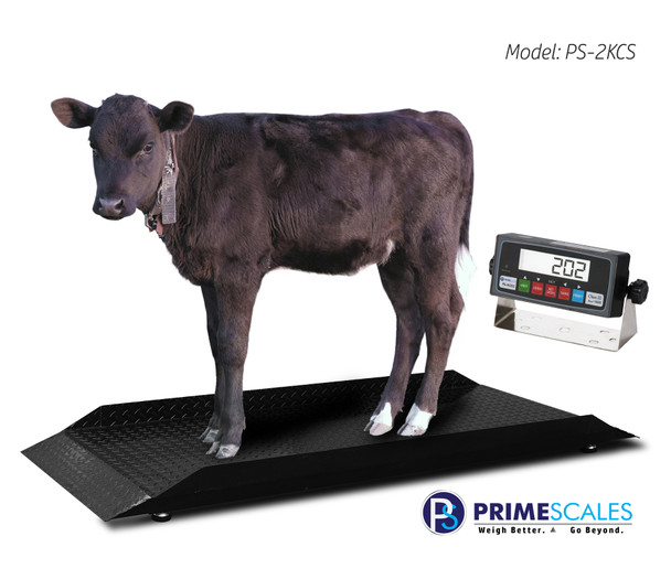 PS-4KCS Animal Scale / Large Livestock Scale for Cattle / Pig / Sheep etc.