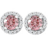1/2 Ct Halo Pink Diamond Lab Grown Diamond Studs White Gold Screw Back Earrings (Pink, SI(1)-SI(2))