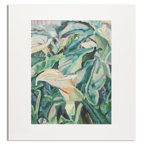 Grace Cossington Smith, Arums Growing Mounted Print