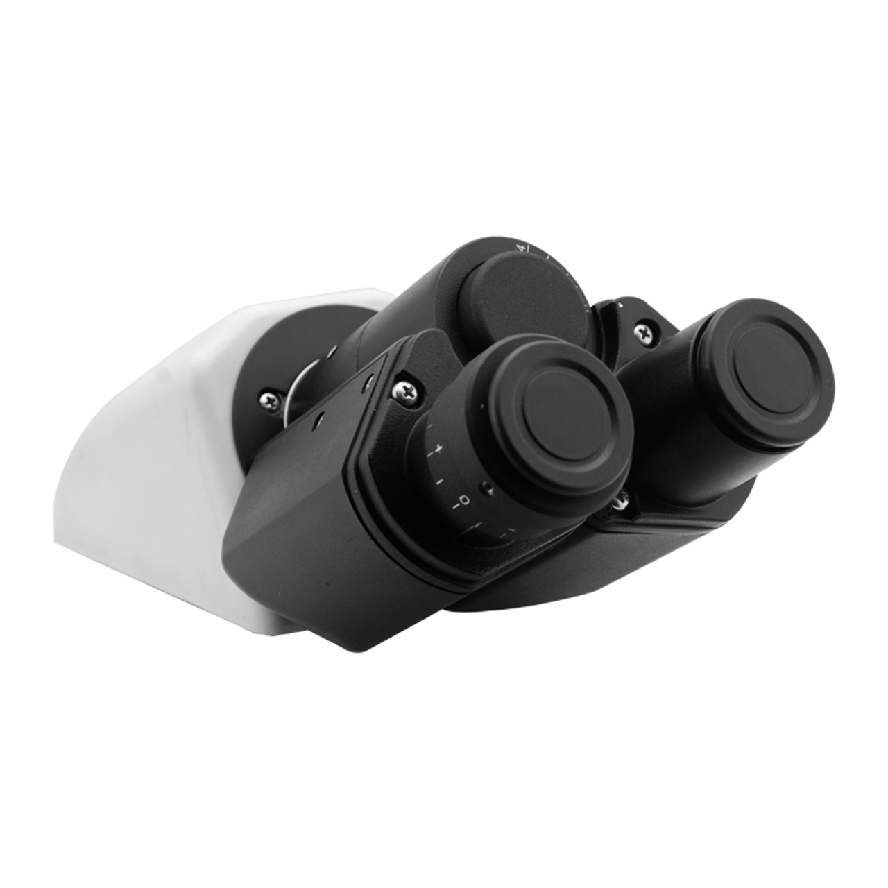 Infinite BoliOptics Binocular Compound Microscope Eyepiece Body Tube BM05101221 Eyetube Angle 30 Degrees