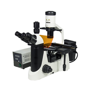 100X-400X Inverted Fluorescence Microscope, Trinocular, Dual Light HM