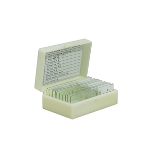 10 Prepared Microscope Slides Specimen Set, Plant Animal Human Anatomy Cells