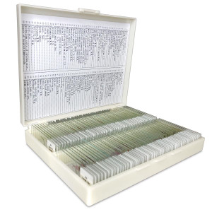 100 Prepared Microscope Slides Specimen Set, Plant Animal Human Anatomy Cells