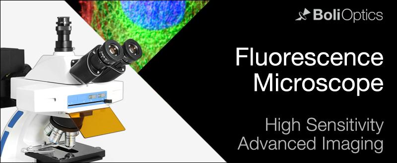 fluorescence-microscope