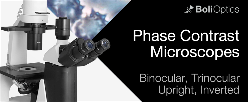 phase-contrast-microscope