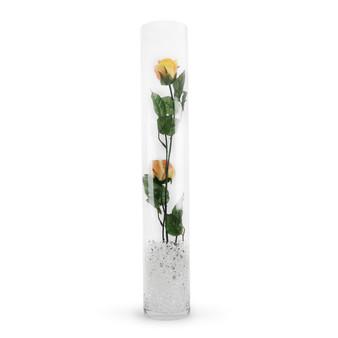 """VCY0424 - Cylinder Glass Vase - 4""""x24"""" (6 pcs)"""