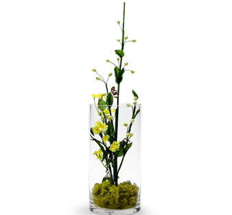 "VCY0510 Cylinder Glass Vase - 5""x10"" (12 pcs)"