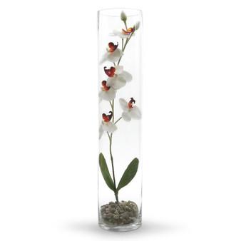 """VCY0524 Cylinder Glass Vase - 5""""x24"""" (6 pcs)"""