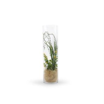 """VCY0726 - Cylinder Glass Vase - 7""""x26"""" (4 pcs/case)"""