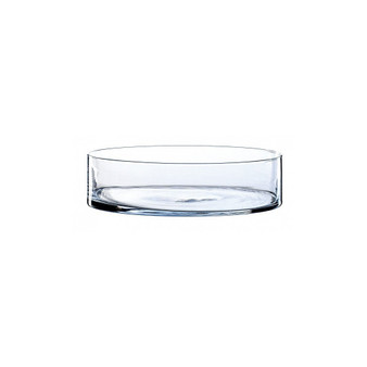 """VCY1504 Clear Cylinder Glass Vase - 15"""" x 4"""" (1 pc)"""