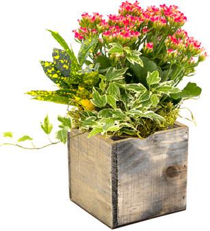 """WCB0004RS - Rustic Wood Planter Box - 4"""" (12 pcs)"""