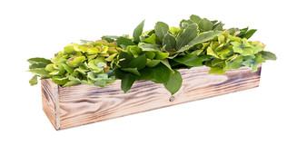 """WBR2044WA - White Washed Wood Planter Long Box - 20"""" (6 pcs)"""