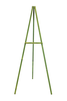 "EASEL66GW - Wooden Floral Easel, Green Stained Wood - 66"" (1 Pc)"