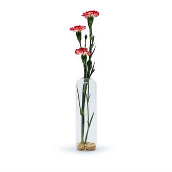 "HBD0108 - Small Cylinder Domed Top Bud Vase - 7.75"" (48 Pcs)"