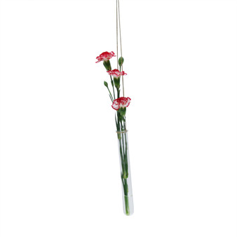 "HTB0108 - Large Hanging Test Tube Vase - 8"" (12 Pcs)"