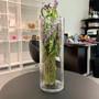"""VCY0616 Cylinder Glass Vase - 5.7""""x16"""" (6 pcs)"""