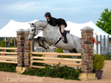 4 Advantages of Building Horse Jumps with Faux Pillars