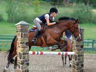 Incredible Horse Jump Designs with Faux Columns