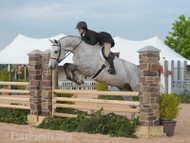 Synthetic Panels & Columns for Show Jumping