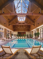 Stunning Indoor Swimming Pool Design with Trusses