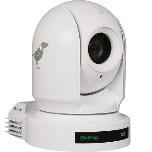 BirdDog Eyes P200 1080p Full NDI PTZ Camera (White)