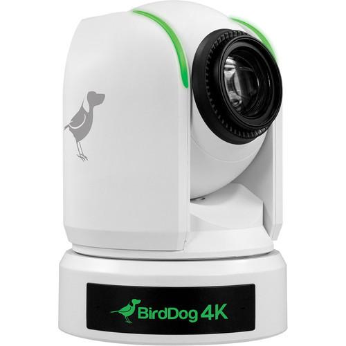"""BirdDog P4K. 4K Full NDI PTZ Camera With 1"""" Sony Sensor (White)"""