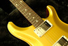 PRS Paul Reed Smith DGT Gold Top with Moons 2020