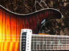 Paul Reed Smith Paul's 85 Private Stock