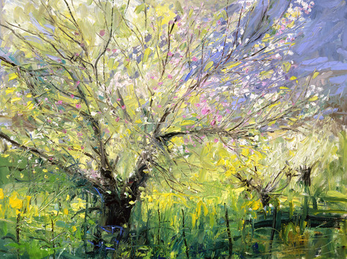 Blossoms Giclee Print