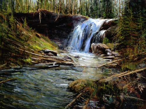 Moose Falls   Giclee Print