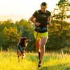 Ruffwear Trail Runner Complete System