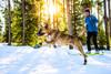 Ruffwear Ruffwear Polar Trex V2 Pairs Dog Snow Boots
