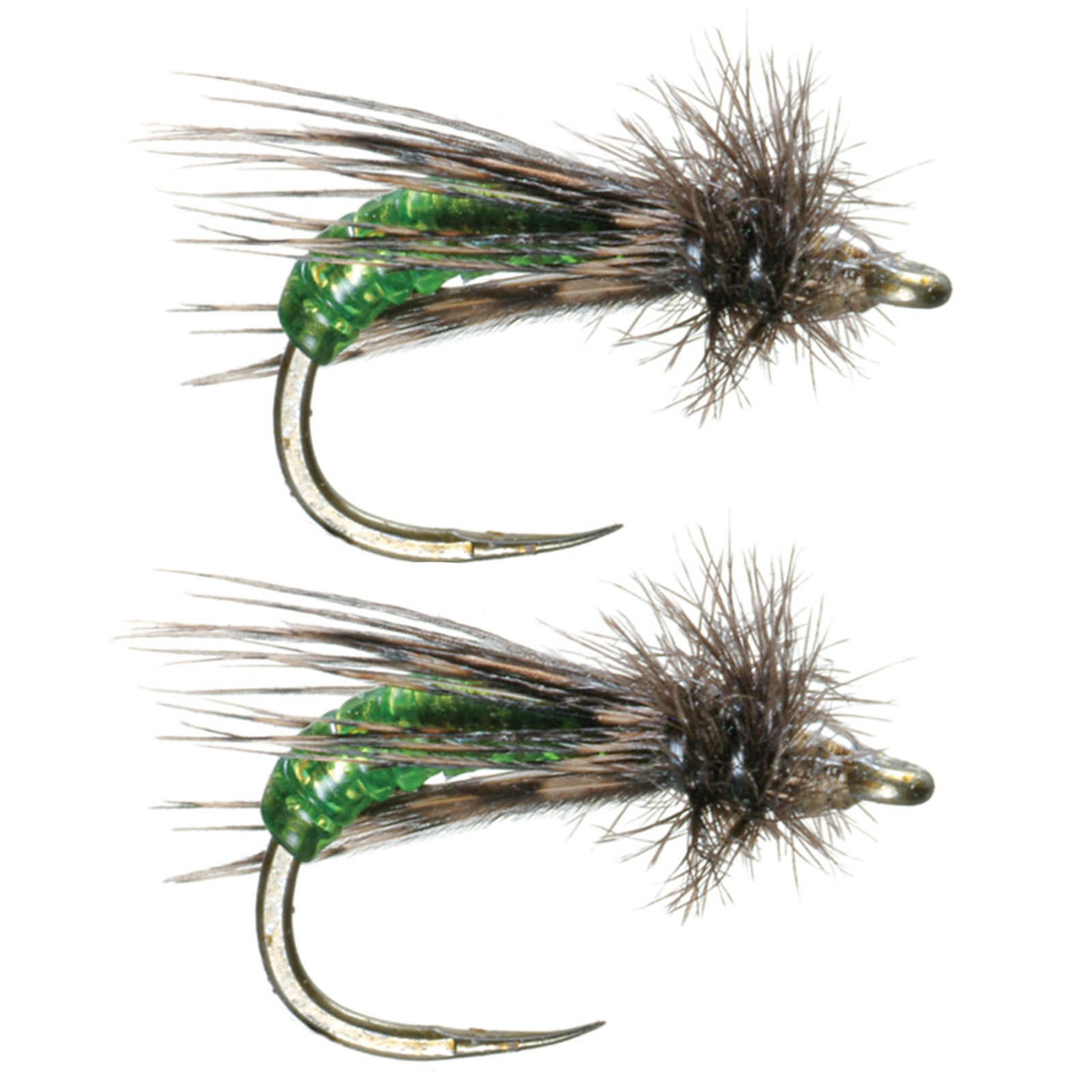 Umpqua Barr/'s Graphic Caddis Olive 2 Pack Emerger Fly Fishing Flies