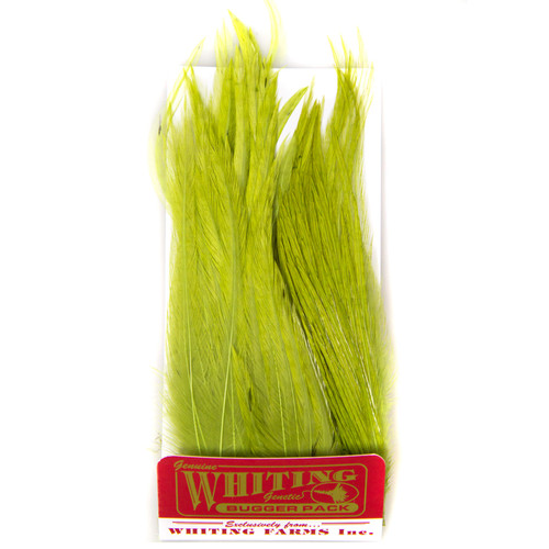 Whiting Farms Whiting Bugger Pack - All Colors