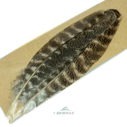 Wapsi Turkey Wing Quill Mottled Oak #1