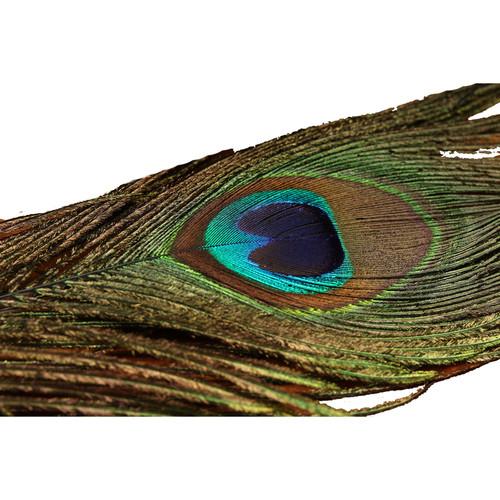 Spirit River UV2 Peacock Eyes